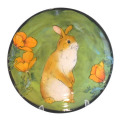 Salad Plate with Rabbit on Grass Green
